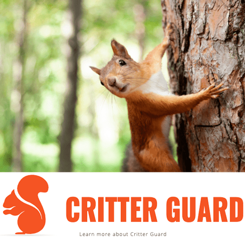 CRITTER GUARD SOLUTION
